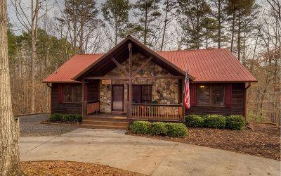 Ellijay Single Family Home For Sale: 544 Eagle Mountain Dr E