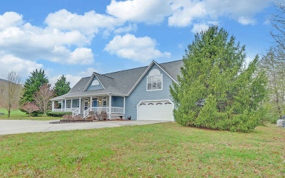 Blairsville Single Family Home For Sale: 42 Wild Acres Rd