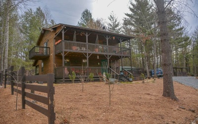 Blairsville Single Family Home For Sale: 275 Wild Ridge Rd