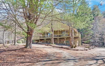 Blairsville Single Family Home For Sale: 126 Turkey Trot