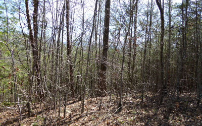 Young Harris Residential Lots & Land For Sale: Lt 67 Pinecrest