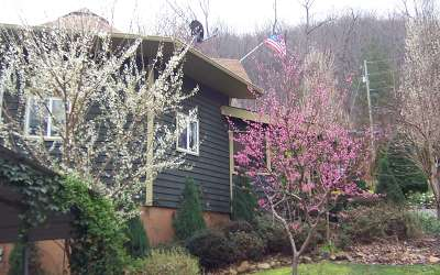 Ellijay Single Family Home For Sale: 16 Beauregard Trace