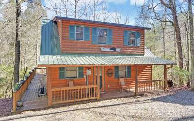 Suches Single Family Home For Sale: 9369 State Highway 60