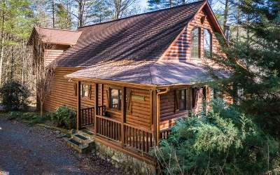 Ellijay Single Family Home For Sale: 395 Walker Ridge