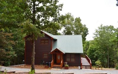 Blue Ridge Single Family Home For Sale: 366 June Bug Lane