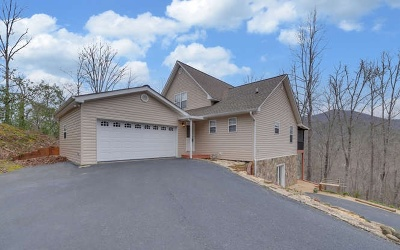 Hiawassee Single Family Home For Sale: 730 Deer Lane