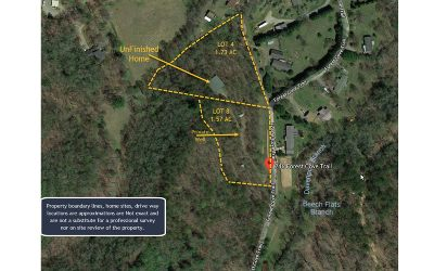 Hayesville Single Family Home For Sale: 246 Forest Cove Trail