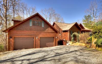 Blue Ridge Single Family Home For Sale: 199 Fox Run Drive