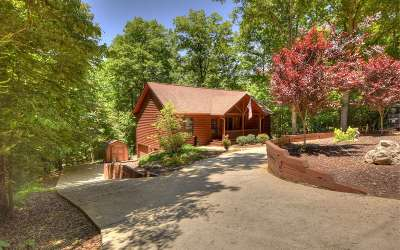 Ellijay Single Family Home For Sale: 281 Summit Drive