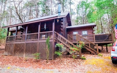 Blue Ridge Single Family Home For Sale: 1014 Joann Sisson Road