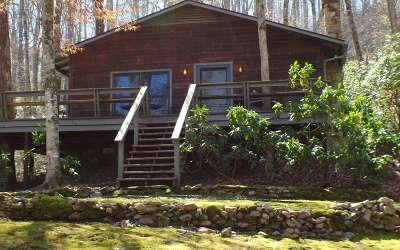 Brasstown Single Family Home For Sale: 435 Mason Rd