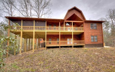 Mineral Bluff Single Family Home For Sale: 161 Red Bridge Lane
