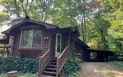 Hayesville Single Family Home For Sale: 293 Mission Dam Rd