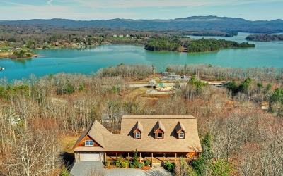 Hiawassee Single Family Home For Sale: 1145 Buckeye Lane