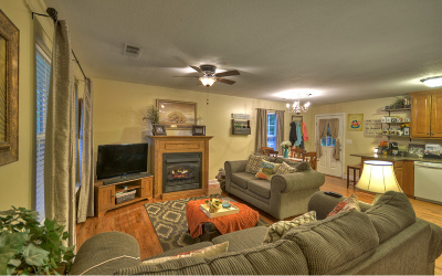 Blue Ridge Single Family Home For Sale: 531 Scenic Dr