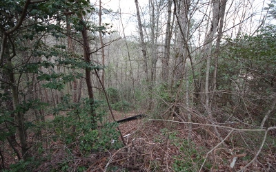 Residential Lots & Land For Sale: Aspen Avenue Lot 22