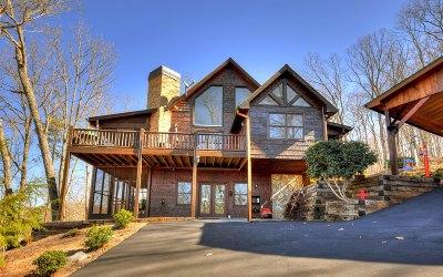Fannin County Single Family Home For Sale: 52 Rabbit Ridge Road