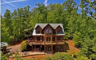Blue Ridge Single Family Home For Sale: 176 Raintree Bend