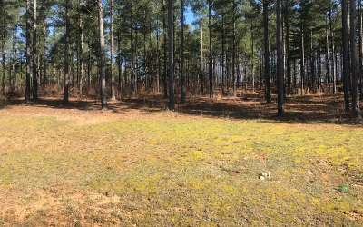 Residential Lots & Land For Sale: Lt167 Thirteen Hundred
