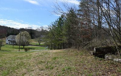 Ellijay Residential Lots & Land For Sale: Lt 23 Pine Tree Ct