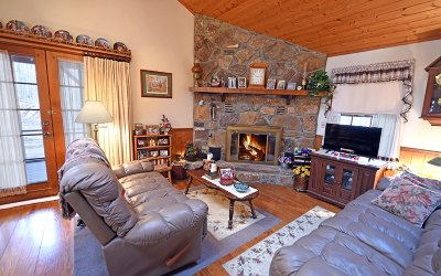 Blairsville Single Family Home For Sale: 61 Bear Gap