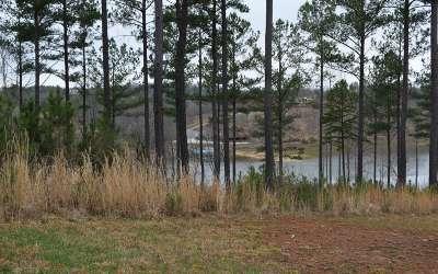 Residential Lots & Land For Sale: Lt216 Thirteen Hundred