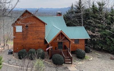 Fannin County Single Family Home For Sale: 202 Oak Ledge