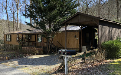Hiawassee Single Family Home For Sale: 49 Leisure Woods Loop