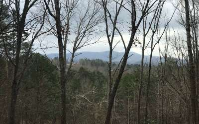 Blue Ridge Residential Lots & Land For Sale: Sowers Road