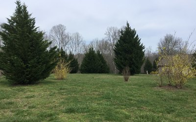 Residential Lots & Land For Sale: Lot 2 Whistle Pig Terrace