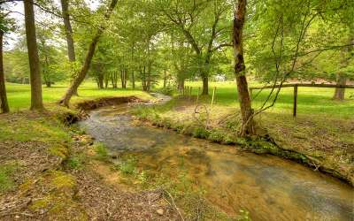 Fannin County Single Family Home For Sale: 90 Pounding Mill Creek