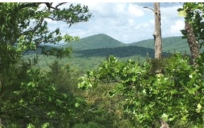 Mineral Bluff Residential Lots & Land For Sale: Mineral Bluff Peak