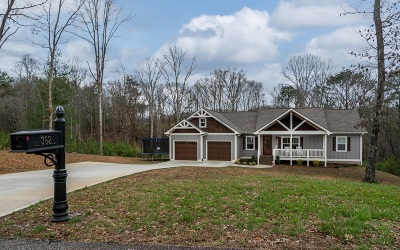 Ellijay Single Family Home For Sale: 362 Meadow Circle