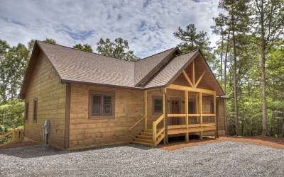 Ellijay Single Family Home For Sale: 64 Morley Drive
