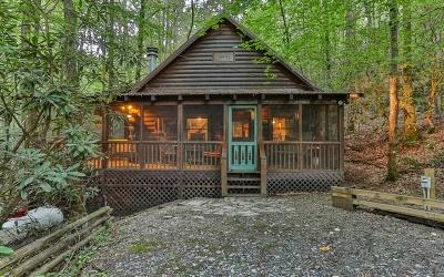 Fannin County Single Family Home For Sale: 82 Finch Lane
