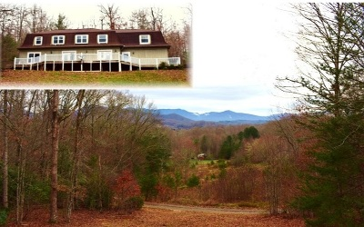 Hayesville Single Family Home For Sale: 222 Hidden Forest Ln