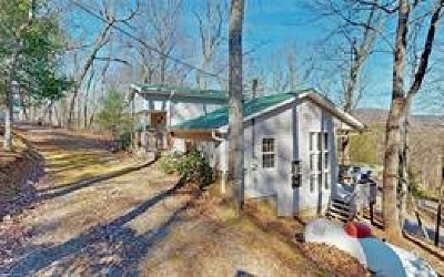 Ellijay Single Family Home For Sale: 317 Can Town Road