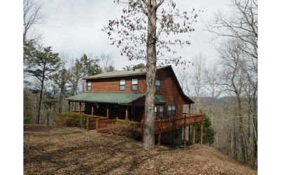 Blairsville Single Family Home For Sale: 192 Hawks Claw Trail