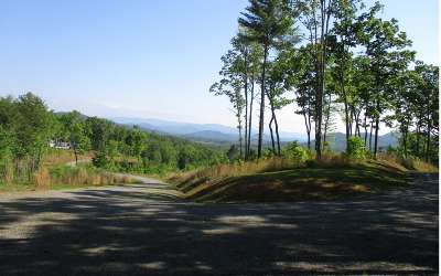 Murphy Residential Lots & Land For Sale: Lot48 Colonial Loop