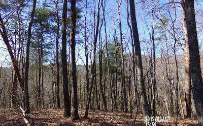 Ellijay Residential Lots & Land For Sale: L315 Agate Ct
