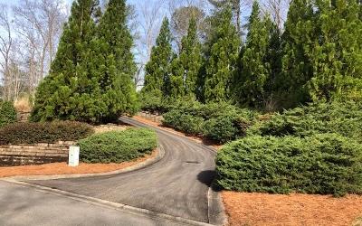 Ellijay Residential Lots & Land For Sale: Lt 3 The Oaks Drive
