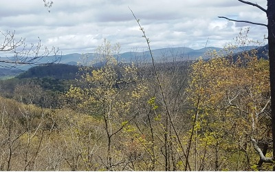 Ellijay Residential Lots & Land For Sale: L 235 Stone Cliff Dr