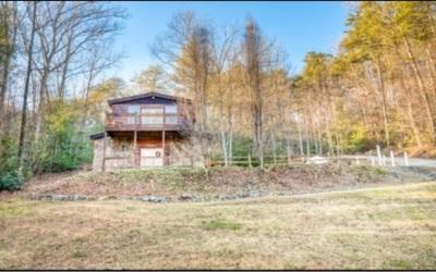 Blue Ridge Single Family Home For Sale: 39 Mountain Laurel Lane