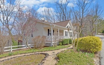 Blairsville Single Family Home For Sale: 168 Moon Shadow Trail