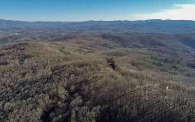 Ellijay Residential Lots & Land For Sale: Burnt Mountain Rd