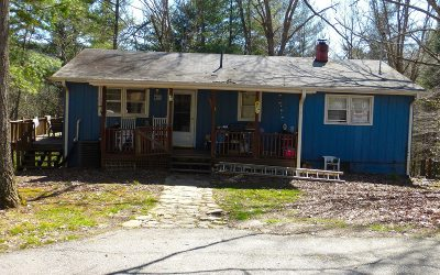 Blairsville Single Family Home For Sale: 3402 Pat Colwell Road