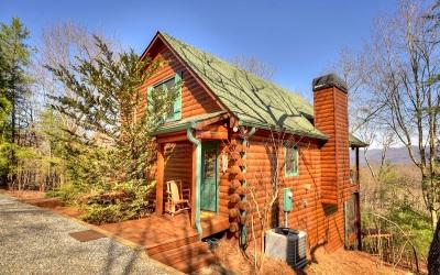 Ellijay Single Family Home For Sale: 10 Trails End Ridge