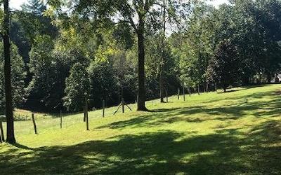Fannin County Single Family Home For Sale: 160 Patterson Lane