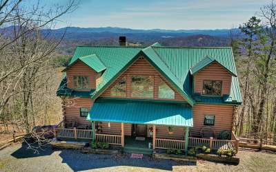Fannin County Single Family Home For Sale: 654 Bruce Mountain Rd