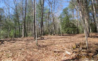 Hayesville Residential Lots & Land For Sale: 1912 Bristol Rd